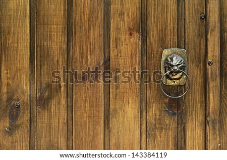 lion - door knocker - stock photo