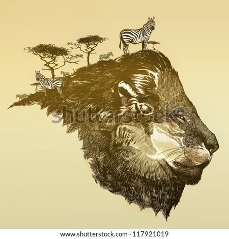 Lion of savanna - stock photo
