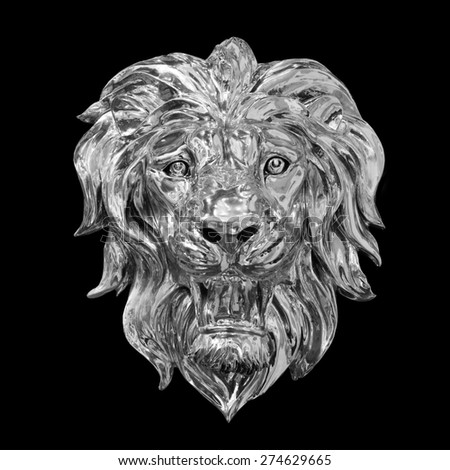 Lion on a black background - stock photo