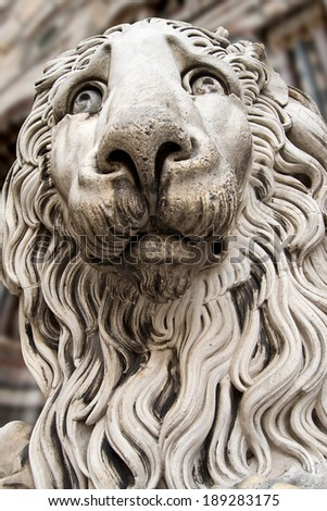 Lion Statue Cathedral St. Lawrence Genova / Sculpture of a stone lion in cathedral of St. Lawrence (San Lorenzo) - XII-XIV century in Genova, Liguria, Italy