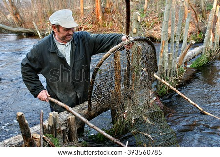 Lipovec village, Tver region, Russia - May 3, 2006: Elderly peasant fishermen catch fish in a small river, using hoop nets fish trap.