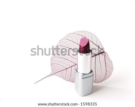 lipstick and leaf skeleton - stock photo