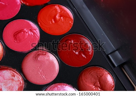 lipstick pallet/the make up pallete