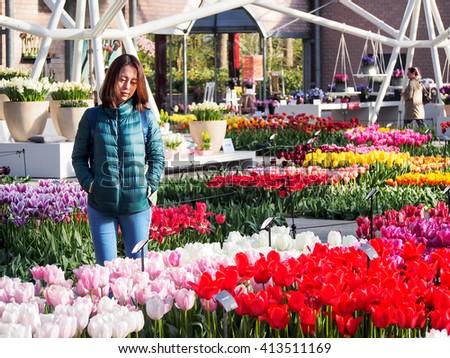 LISSE, NETHERLANDS - APR 10, 2016: Tourist enjoy beautiful tulip garden in Keukenhof 2016, Amsterdam, Netherlands. Keukenhof is one of the world's largest flower gardens. - stock photo