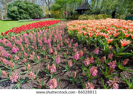 LISSE, NETHERLANDS - APRIL 9: Flower beds at Keukenhof Gardens, Lisse, Netherlands on April 9, 2011. Keukenhof is the world's largest flower garden with 7 million flower bulbs covering 32 hectares.