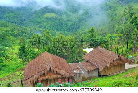 Tribe stock images royalty free images vectors for Tribal house