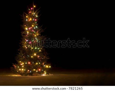 Lit up christmas tree outside in the snow - stock photo