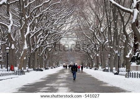 Literary Walk in Central Park in winter - stock photo