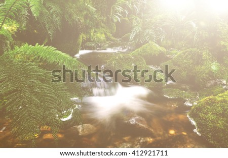 Lithophlyte Flowing Fresh Water Tranquil Relax Concept - stock photo