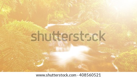 Lithophyte Flowing Fresh Water Tranquil Relax Concept - stock photo