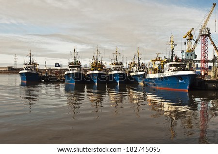 Fish Cutter Stock Photos Images Amp Pictures Shutterstock