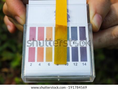 Litmus ph test paperisolated - stock photo