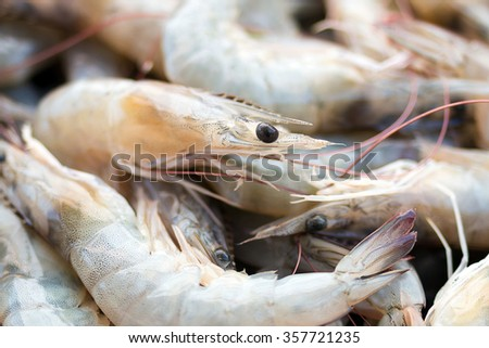 Vannamei Shrimp Stock Photos, Royalty-Free Images ... - photo#26