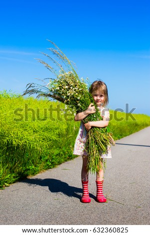 Swedish Midsummer Stock Images Royalty Free Images