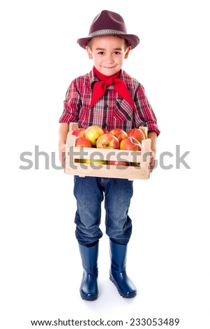 Little agriculturist boy holding fresh apples in crate - stock photo