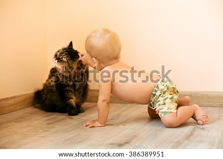 little baby and the cat - stock photo