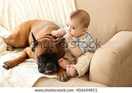 Little baby boy with boxer dog on a couch at home - stock photo