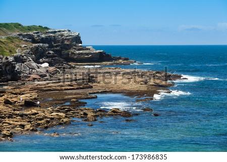 Little Bay, Sydney - Australia  - stock photo