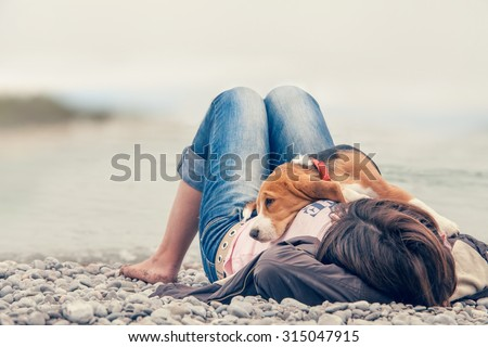 Little beagle puppy lying on his owner chest at the sea side - stock photo