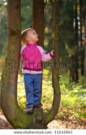 Little beauty girl on tree in the autumn forest look up