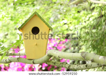 Little birdhouse in a tree. - stock photo