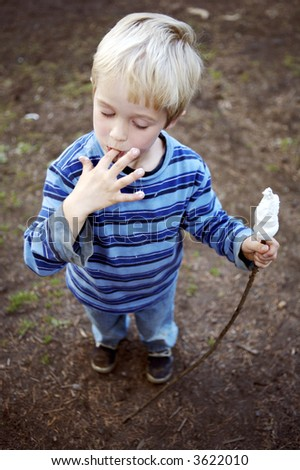 Little blond boy eating roasted marshmallows - stock photo