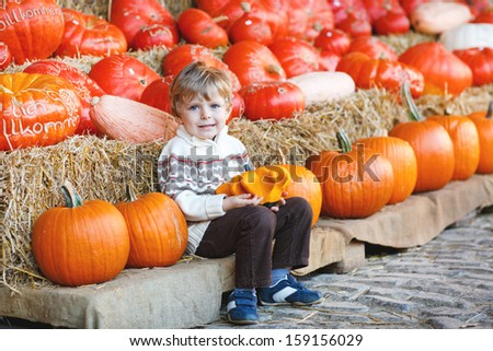 Little blond boy on pumpkin patch farm