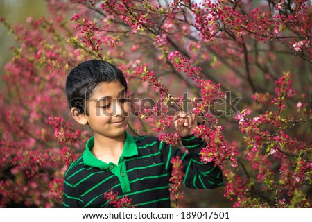 Little Boy Admiring Spring Flowers - stock photo