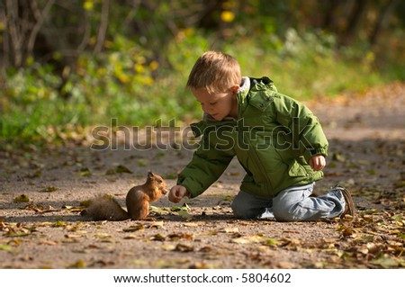 Little boy and squirrel at warm sunny fall day - stock photo