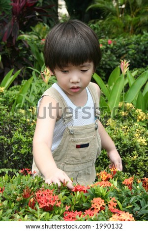 Little boy at the garden exploring to the nature - stock photo