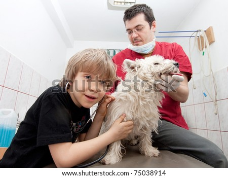 Little boy at vet listening to his dog's heartbeats in stethoscope - stock photo