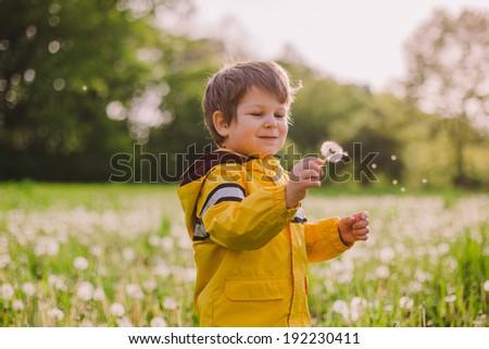 Little boy blowing dandelion in spring field - stock photo