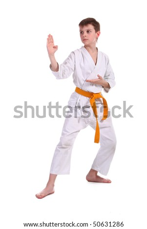 Little boy (child) practice karate isolated on white background - stock photo