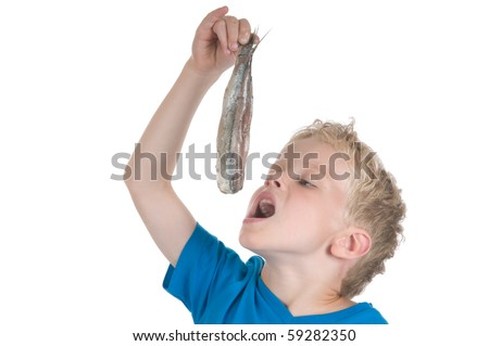 Little boy eating a herring. It is a Dutch tradition to eat a herring like this. In Holland they also call a herring a Maatje.