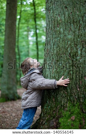Little boy embracing the big tree trunk in the forest - stock photo