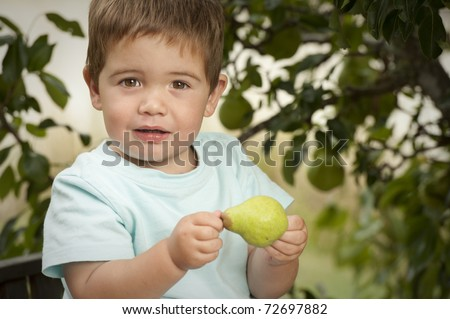 little boy excited about picking fruit from tree - stock photo