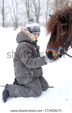 little boy feeding horses outdoors - stock photo