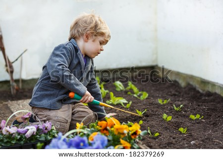 Little boy gardening and planting vegetable plants and flowers in garden - stock photo