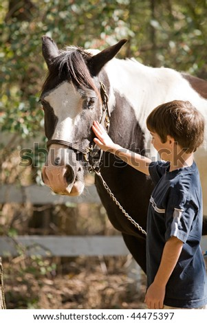 Little Boy Happy to be Petting a Horse - stock photo