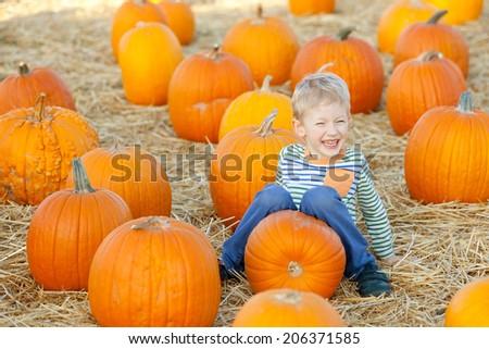 little boy having fun at pumpkin patch at fall