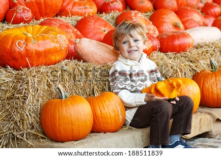 Little boy having fun with pumpkins on pumpkin patch on farm