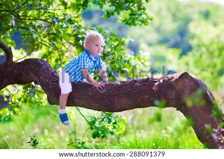 Little boy hiking in a forest. Outdoor fun for family in country side. Summer hike with young children. Toddler kid playing in a park climbing a tree. Child running in the woods. Kids play and climb. - stock photo