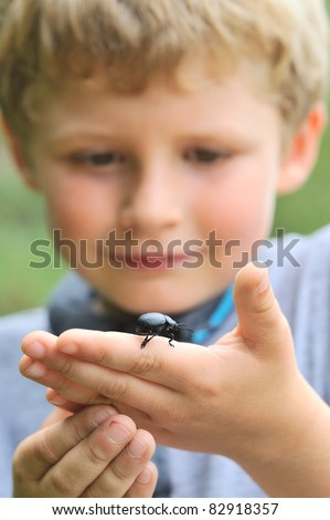 Little boy holding a bloody-nosed beetle (Timarcha tenebricosa) - stock photo