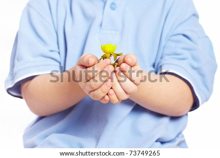 Little boy holding green plant in his hands isolated over white background