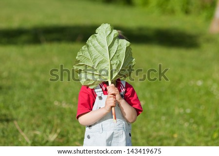 Little boy holding leaf in front of face while standing in yard - stock photo