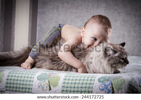 little boy hugging a cat on a sofa - stock photo