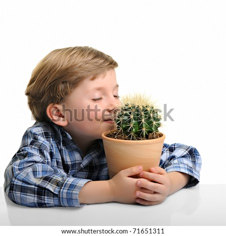little boy hugging his houseplant cactus, isolated on white - stock photo
