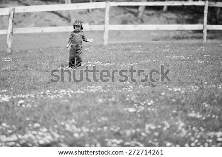 little boy in a meadow - stock photo