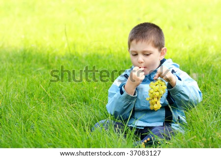 Little boy in blue jacket eats grapes in green meadow