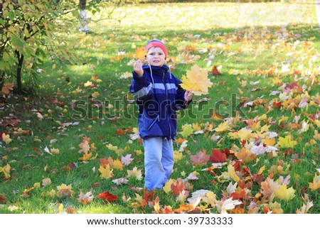 Little boy in casual collecting leaves in autumn park